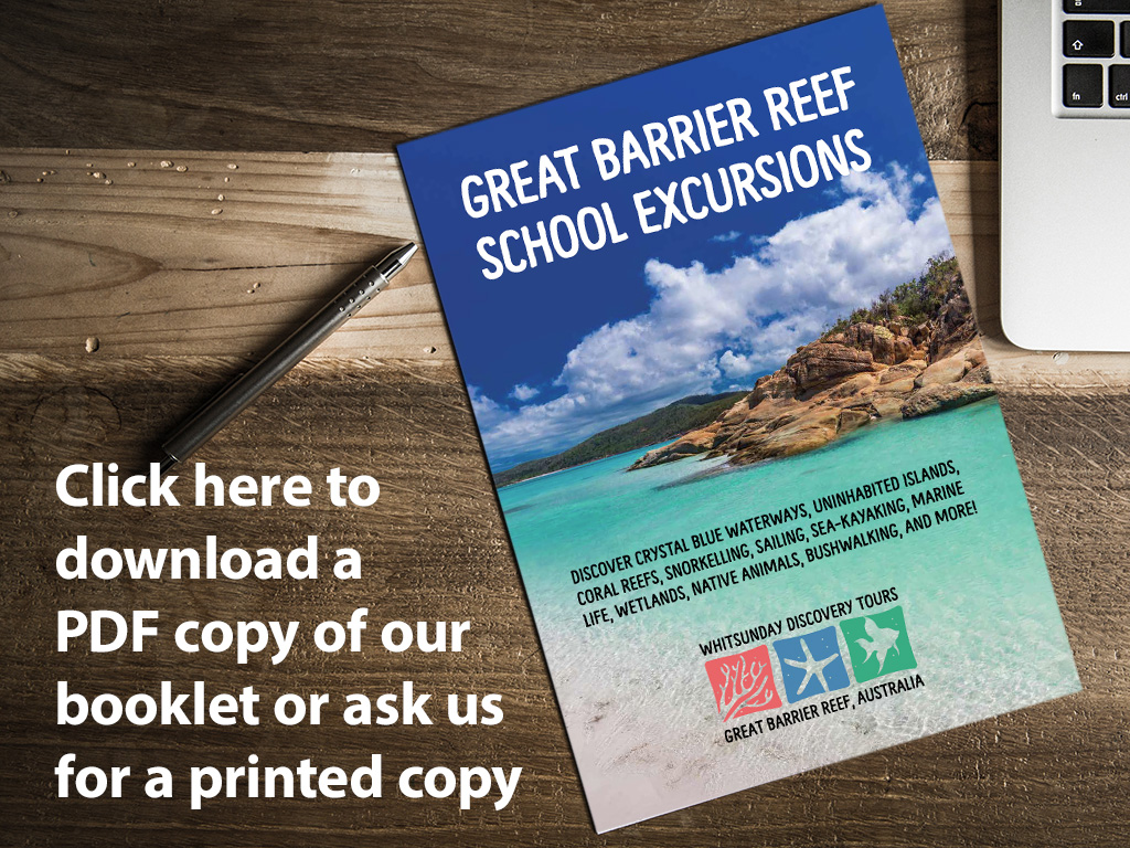 Click here to download a copy of our booklet 'Great Barrier Reef School Excursions'